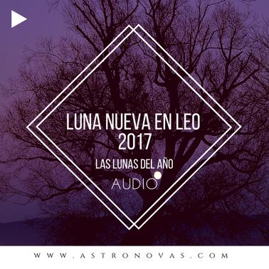 Luna Nueva en Leo 2017